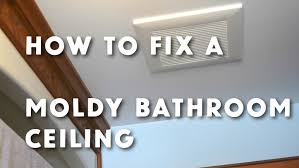 how to get rid of bathroom ceiling mold www stevemaxwell ca