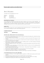 example it resume summary experience resume examples examples of resumes