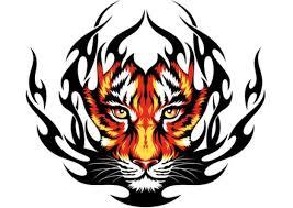 tiger photo vector ideas tigers tatoo