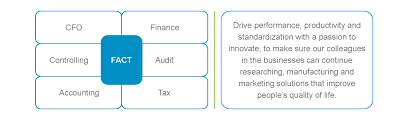 international trainee program for financial management