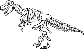 18 dinosaur bones coloring pages animals printable coloring pages