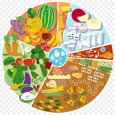 mimosa cuisine food balance wheel portuguese cuisine nutrition mimosa