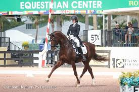 janet foy 12 ways to lose points in the show ring ps dressage