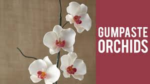how to make a gum paste orchid youtube