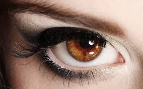 brown eyes wallpaper 1920x1200 3643