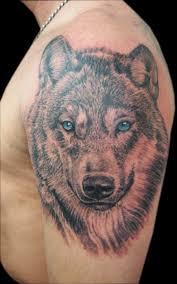 terrier tattoo tattoo fx gallery category neil u0027s portrait work image jack