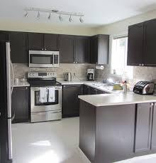 Rustoleum Kitchen Cabinet Transformation Kit Cabinet Transformations Submitted By Cara