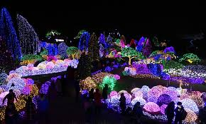 14 photos that illuminate the of a korean light festival