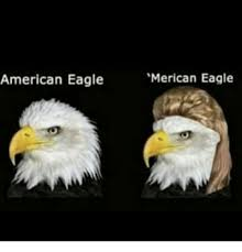 America Eagle Meme - american eagle merican eagle meme on me me