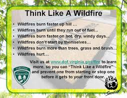 Elgin Oregon Wildfire by Virginia Wildfire Information And Prevention April 2011