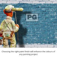 is paint any paint finishes