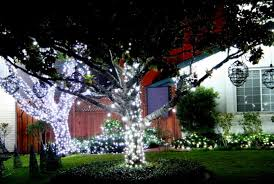 solar powered christmas lights yuletide spirit of giving through solar christmas lights