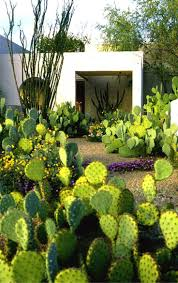 Desert Landscape Ideas For Backyards by 231 Best Outdoor And Landscaping Ideas Images On Pinterest