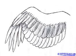 how to draw a simple bird wing step by step birds animals free