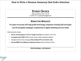 Resume Summaries Examples by Writing A Resume Summary Resume Cv Cover Letter