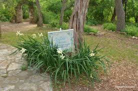Botanical Gardens Volunteer by The Volunteer Gardens