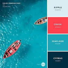 Canva Color Palette Ideas | creative color palettes learn