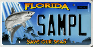 motorcycle vanity plates florida license plates
