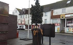 could this u0027giant weed u0027 be britain u0027s worst christmas tree telegraph