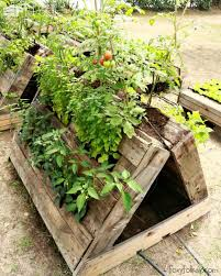 Raised Garden Beds From Pallets - the most perfect raised garden beds made out of pallets u2022 1001 pallets