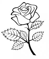 design flower rose drawing rose flower line drawing clipartxtras