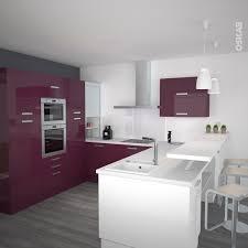 organisation du travail en cuisine cuisine aubergine modèle keria aubergine brillant kitchens