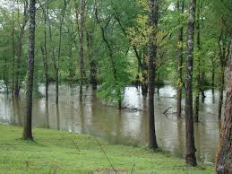 in crossville tn s creek flooding crossville photo album topix