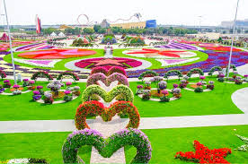 pictures of a garden dubai miracle garden world s biggest flower garden dubai uae