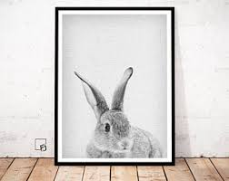 rabbit poster bunny poster etsy