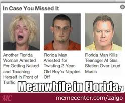 Florida Meme - just another day in florida by zalgo meme center