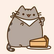 thanksgiving cat gif sophia ji youtube