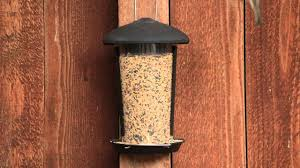 Wall Mount Pet Feeder Perky Pet Wall U0026 Post Mount Wild Bird Feeder Youtube