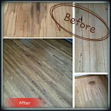 hardwood floor sanding staining and refinishing termite and