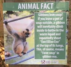 i left some fake animal facts at the l a zoo album on imgur