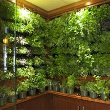 living walls from good earth plant company