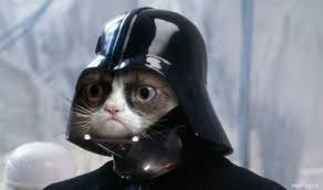 Original Grumpy Cat Meme - grumpy cat internet meme invades star wars socialeyezer