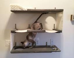 How To Comfort A Cat In Heat Best 25 Cat Hammock Ideas On Pinterest Diy Cat Hammock Diy Cat