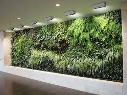 Garden Wall Planter by 16 Woolly Ipad 018 Indoor Living Wall Planter 2017 50 Indoor