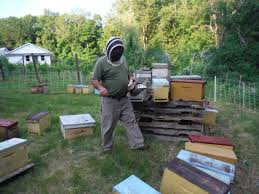 beekeeping archives r local farm