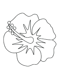 coloring pictures of hibiscus flowers hibiscus flower coloring pages hibiscus coloring page best of flower