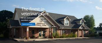 tennessee house knoxville animal clinic veterinarian in knoxville tennessee home