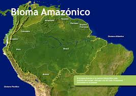 Amazon Rainforest Map Live Amazon Amazon Wildlife Peru Travel