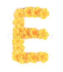 e flowers letter e flower alphabet isolated on a white background stock