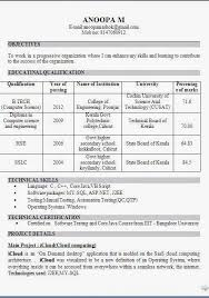Manual Testing Sample Resume by Curriculum Vitae Of Beautiful Excellent Professional Curriculum