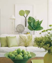 need a plant like this in the back somewhere in the living room
