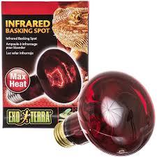 reptile night bulbs infrared lights u0026 lamps discount reptile