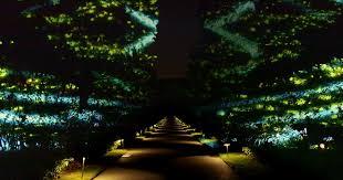 philadelphia light show 2017 longwood gardens light show deentight