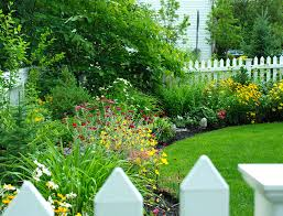 delighful garden ideas along fence line and more on gardening