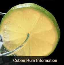 cuban cigars and rum havananetwork com