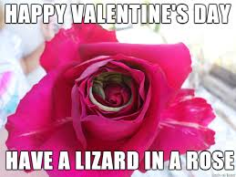 Happy Valentines Day Memes - happy valentine s day meme on imgur